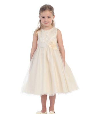 Champagne Flower girl dress in Westminster, MD